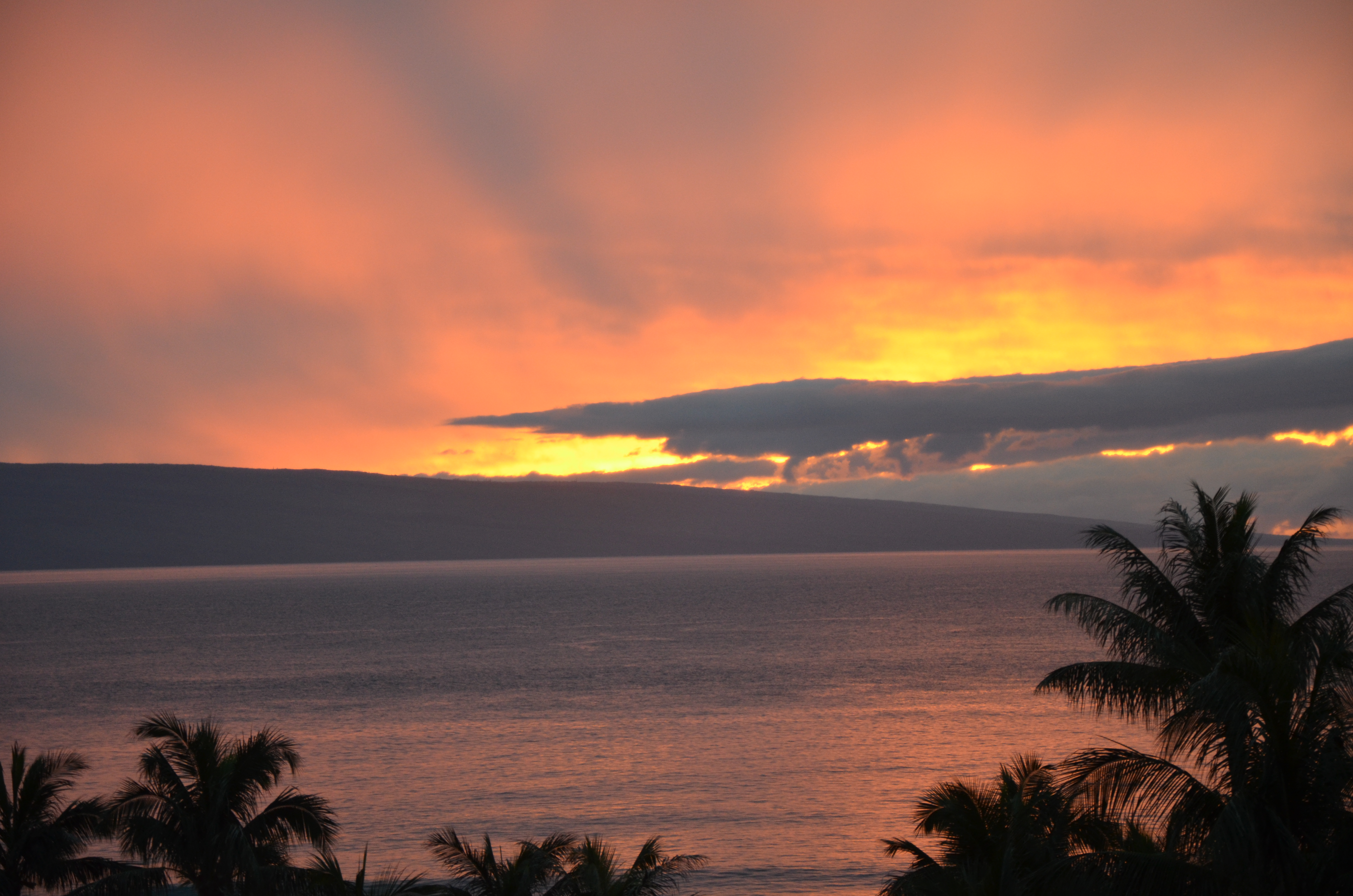 Spectacular Maui Sunset